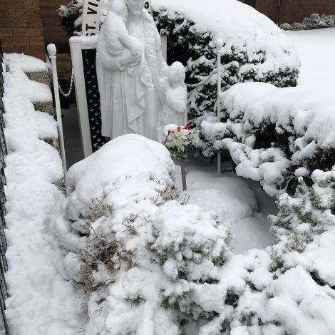 Fr. Bob's Spiritual Reflection–01/27/2021